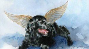 Il cane e la bambina, Angeli Custodi