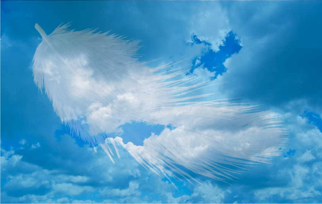 ANGELI INTORNO (storie di manifestazioni Angeliche)