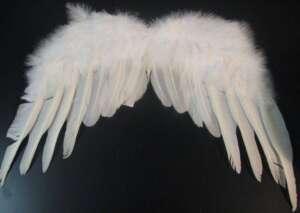 La voce del mio ANGELO CUSTODE