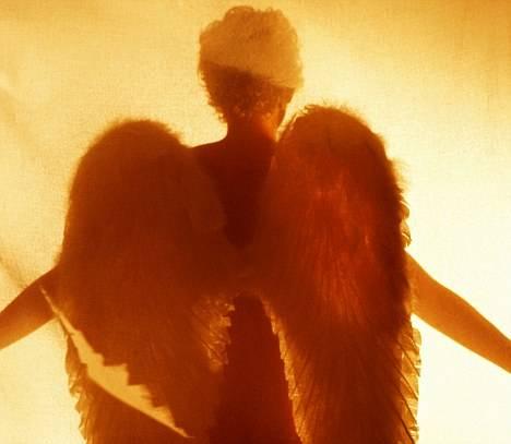 ANGELI TERRENI