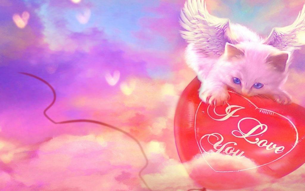 Preghiere per i nostri amati animali