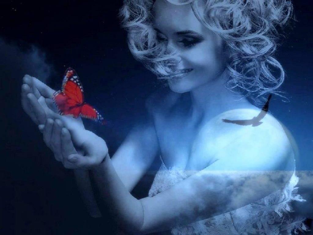 Farfalle e Piume : Storie Di Angeli