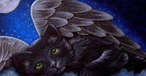 Lo spirito della gatta defunta
