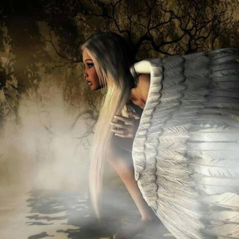 NASCITA E MORTE CON GLI ANGELI